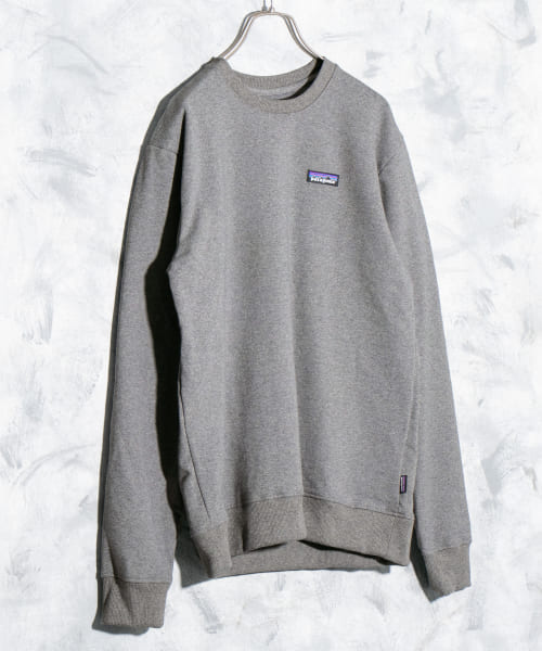 [DOORS][patagonia Ms P-6Label Uprisal Sweat]