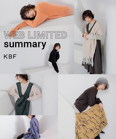KBF WEB LIMITED summary
